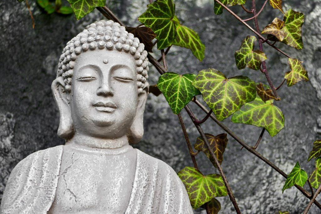 Tout sur Bouddha